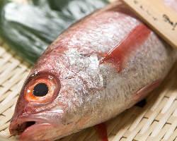 島根県浜田漁港より産直で届く脂ののり抜群の極上ノドグロ。