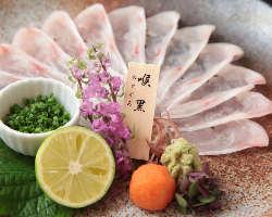 多彩なノドグロ料理。刺・焼・煮など調理法もお選び頂けます。