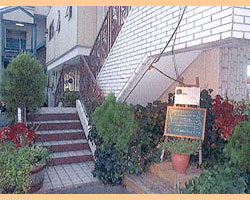 西欧風家庭料理の店 マメゾン 鶴川店 image