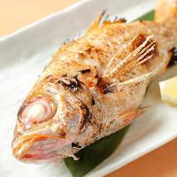北陸の漁港から直送の新鮮魚介で作る絶品料理の数々に舌鼓