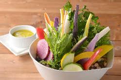 見た目もかわいい鎌倉野菜のバーニャカウダ