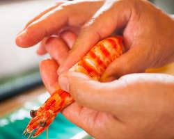 築地から仕入れる新鮮な食材で作る本格江戸前鮨を堪能