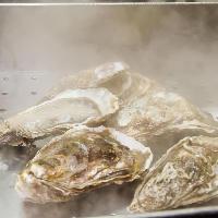 その日最良の産地より仕入れる新鮮で大ぶりな牡蠣