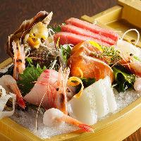 築地より毎日仕入れる季節の旬鮮魚を豪華盛り合わせでご提供