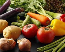 農家直送の有機野菜。自然の美味しさを最大限に活かします。