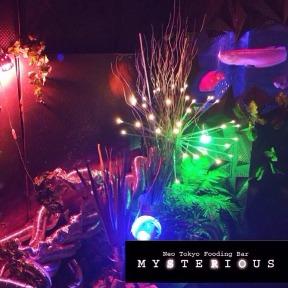 MYSTERIOUS 新宿店の画像2