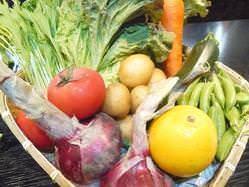 「鎌倉野菜」今が旬の野菜が毎日届きます!!