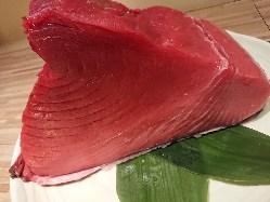 魚が自慢!!
