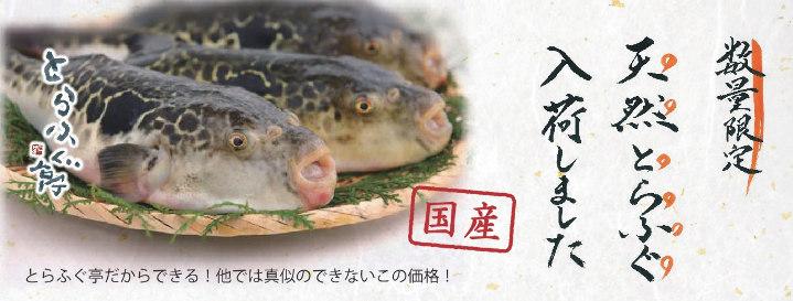 とらふぐ亭 川崎駅前店