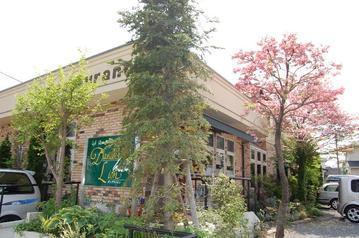 カフェレストラン ダンデライオンの画像