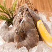 [肉だけじゃない!] 絶品天使の海老など海鮮もお愉しみください
