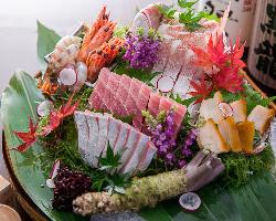 築地直送の鮮魚は酒肴の必需品です。