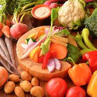 全国各地の新鮮野菜。素材感じる本格イタリアンを堪能