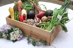 【産直野菜】 サラダから野菜のグリルまでこだわりの食材を提供