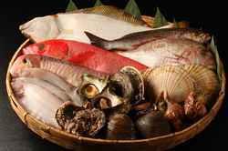 店の隣りが実家の魚屋