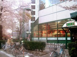 中華街 吉祥寺本店の画像2