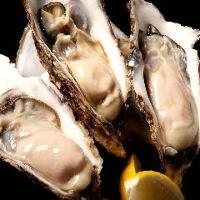 ◆厳選日本酒 季節の和食料理と相性抜群の日本酒をご用意