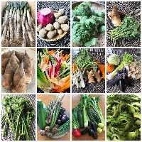 全国の採れたて新鮮野菜を日替わりお料理でお出ししております!