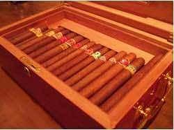 <Cigar〉 キューバ産25種~気軽にお楽しみください