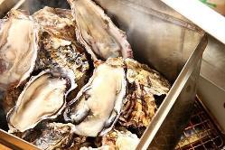 三陸雄勝産直のぷりっぷりな牡蠣を是非ご賞味ください♪