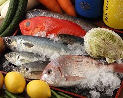[旬の食材多数!] 秋田の味覚をメインに市場直送の鮮魚もご用意