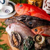 【新鮮食材】 三浦野菜・鮮魚・お米などこだわりの仕入れ
