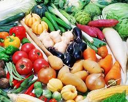 契約農家から直送の旬な有機野菜を 使ったシェフ自慢の創作料理