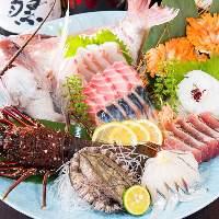 店頭の奇跡の生簀には、全国より直送された鮮魚がずらり。