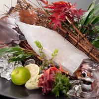 限定販売の鮮魚が入荷することもございます。最新情報をどうぞ。
