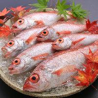 新潟県糸魚川直送 幻の高級魚のどぐろ