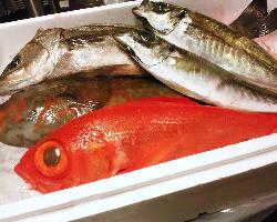 千葉や浦安の漁師を初め日本全国より厳選された鮮魚が届きます!