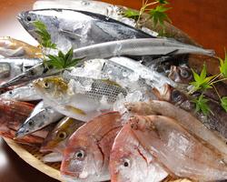 築地より毎日厳選。季節によっ て異なる魚が入ります!