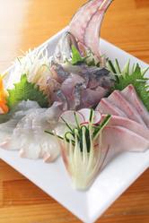三浦市松輪の新鮮な地魚の盛り合わせ!!