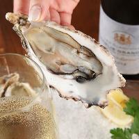 絶品牡蠣料理はワイン以外のお飲み物とも相性抜群です