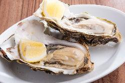 日本各地の新鮮な牡蠣をご用意しております。