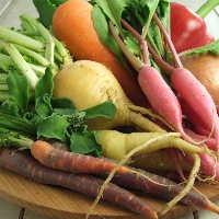 高原直送の循環農法の野菜。 農家さんを直接訪問。