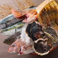 境港から毎朝直送している魚介の数々をぜひご賞味ください
