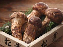 秋限定の国産松茸。 季節を感じられて、喜ばれるお料理を