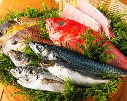 石川県のベテラン漁師より網元直送の鮮魚が届きます。