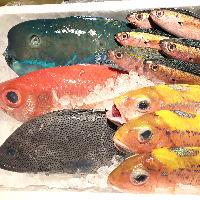 宴会に◎沖縄那覇直送の琉球鮮魚をお造りや海鮮料理で楽しむ