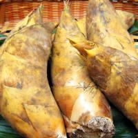 食材は全て国産食材使用 今の旬は九十九里産地蛤と福岡県合馬筍