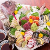 【海鮮フェア】開催中 全国各地の漁港直送した旬魚を味わえる