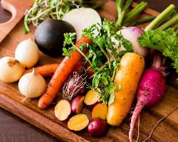 西伊豆の自社ファーム『たまや王国』から届く新鮮な野菜たち。