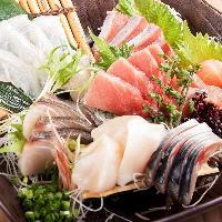 """北海道・函館漁港より直送で毎日仕入れる新鮮な""""朝獲れ""""魚介"""