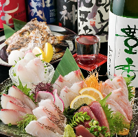 三浦半島直送新鮮魚を使用するお造りをご堪能!