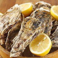 一年中新鮮な牡蠣が楽しめます!
