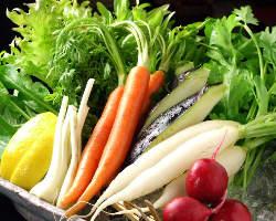 三浦の地野菜を毎日入荷!そのまま生でサラダ仕立てでどうぞ!