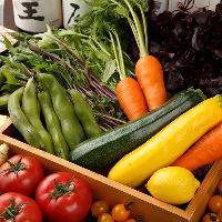 鎌倉野菜・藤沢野菜を使ったヘルシーメニューをお楽しみください