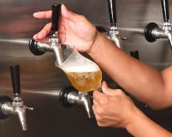 冷蔵庫直結のサーバーから注がれる樽生ビールは感動モノ!
