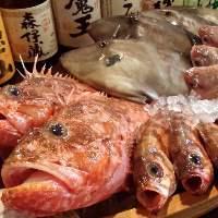 日本海漁師さんから直送新鮮魚介!お勧めの逸品是非ご堪能あれ!